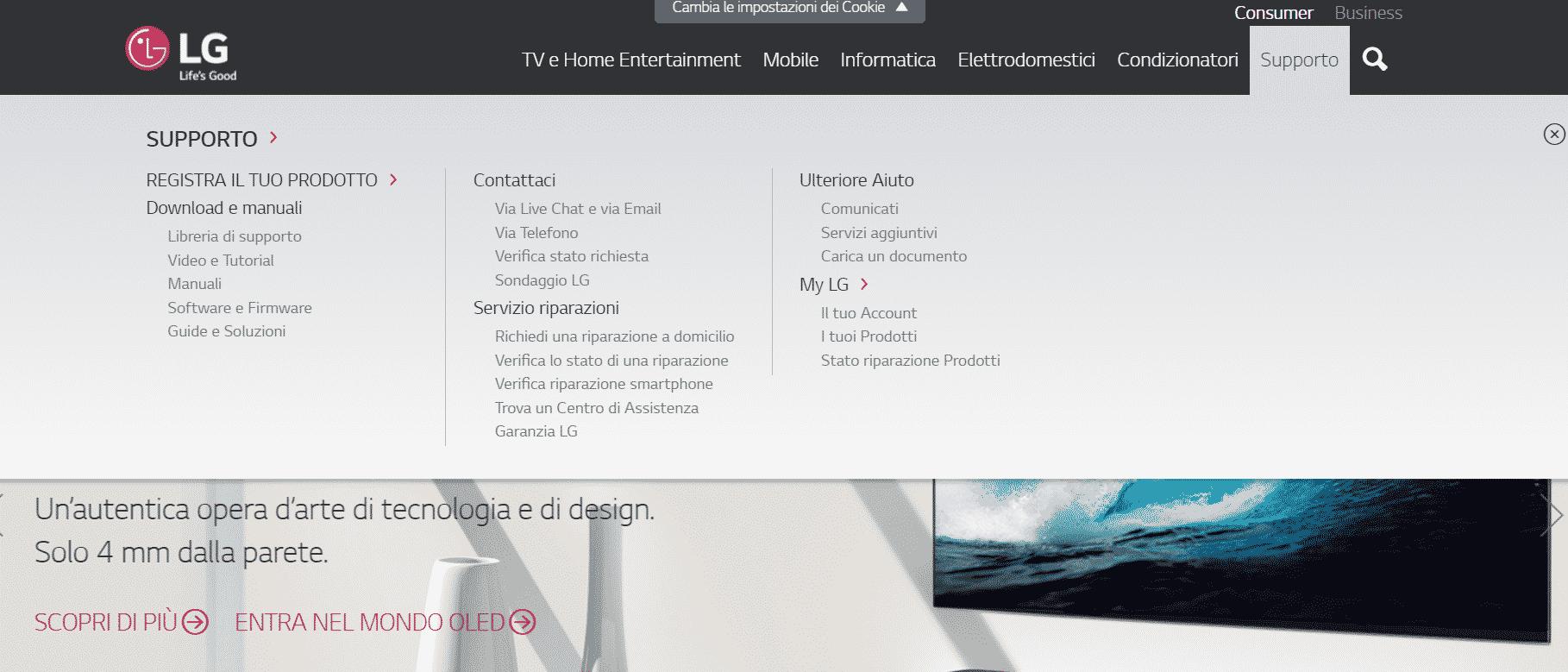 il sito ufficiale di assistenza LG